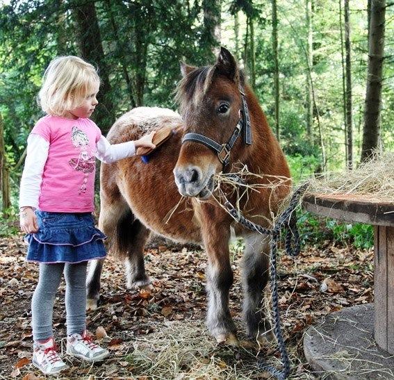 Mookerheide Fair 2013 - meisje en pony - Kleurrijke Wereld Sieraden