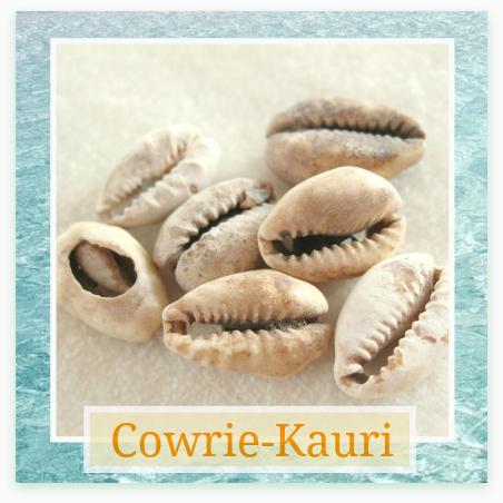 Cowrie - Kauri schelp - Kleurrijke Wereld Sieraden